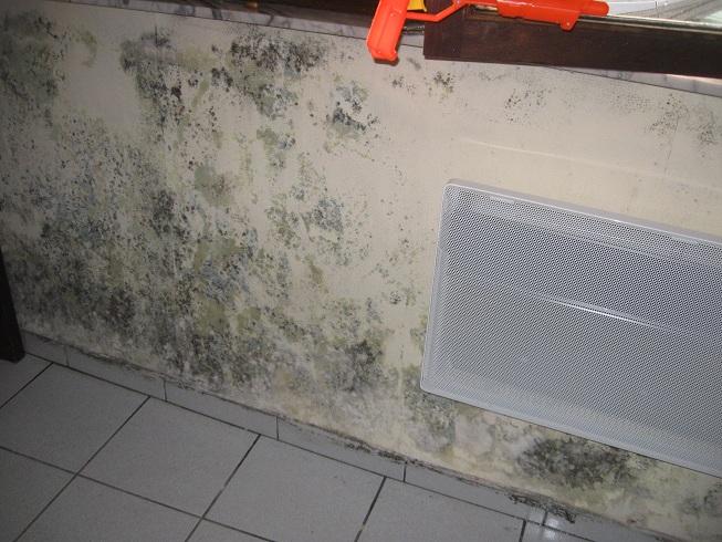 humidité avec taches noires sur mur froid par manque de ventilation